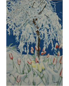 Donald Roy - Tulipes sous la neige